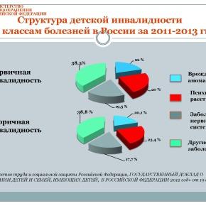Организация медико-социальной реабилитации детей в РФ_Страница_07