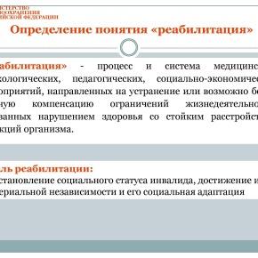 Организация медико-социальной реабилитации детей в РФ_Страница_17