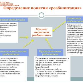 Организация медико-социальной реабилитации детей в РФ_Страница_18