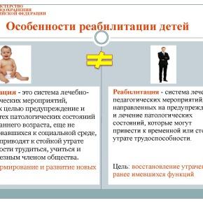 Организация медико-социальной реабилитации детей в РФ_Страница_21