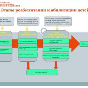 Организация медико-социальной реабилитации детей в РФ_Страница_22