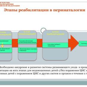 Организация медико-социальной реабилитации детей в РФ_Страница_23