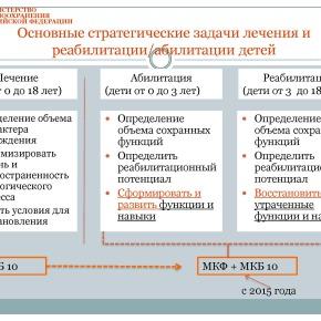 Организация медико-социальной реабилитации детей в РФ_Страница_25