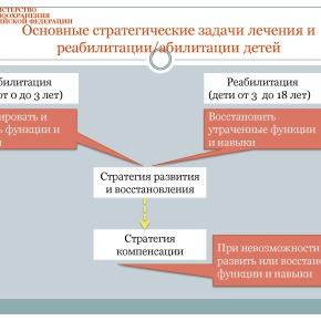 Организация медико-социальной реабилитации детей в РФ_Страница_26