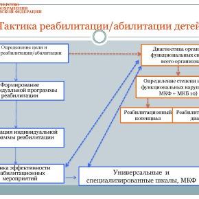 Организация медико-социальной реабилитации детей в РФ_Страница_30